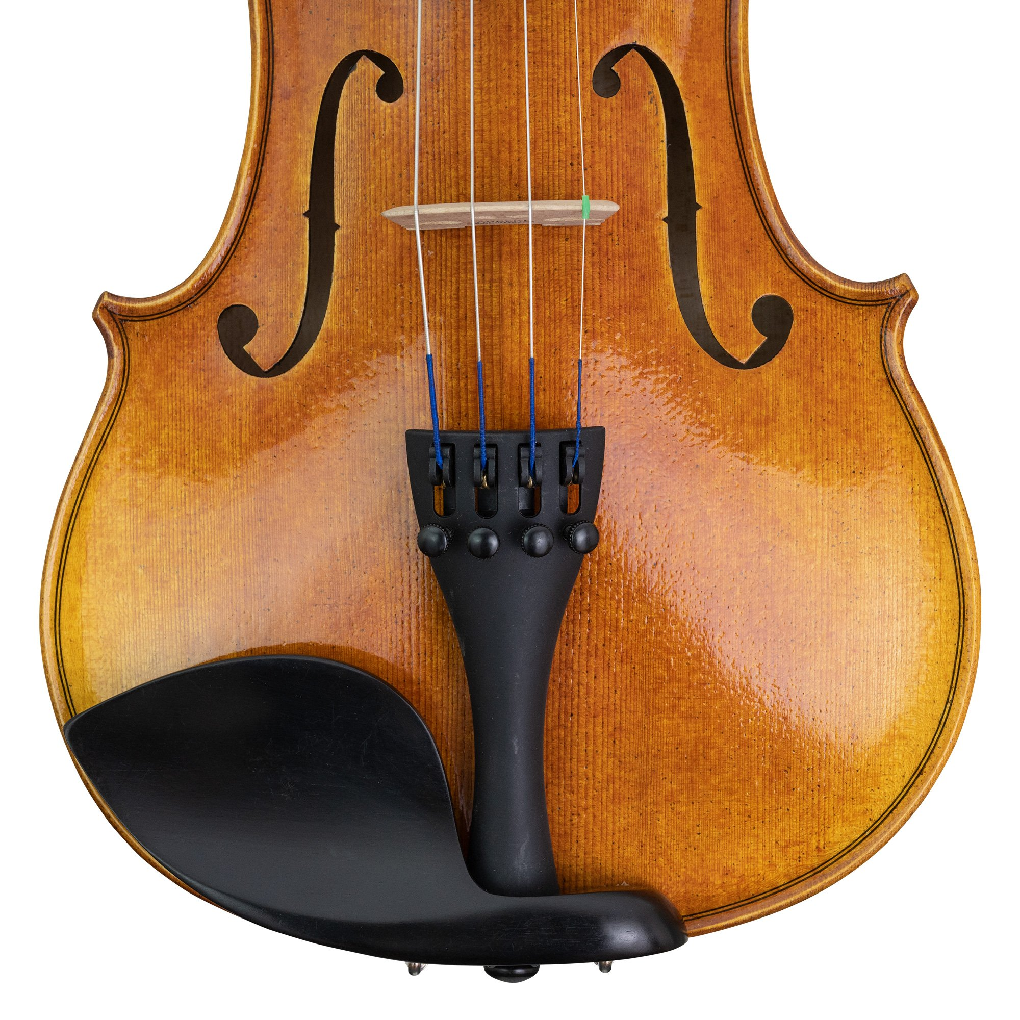 CLEARANCE Vitacek Concert Series Violin Outfit in action