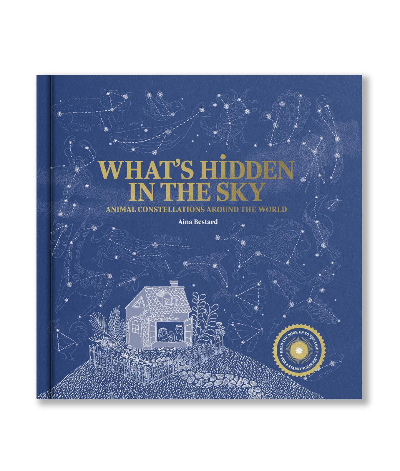 What's Hidden in The Sky