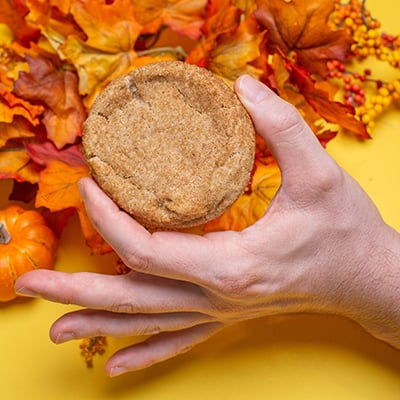 All Pumpkin Spice Everything close up