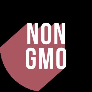 https://cdn.accentuate.io/8756434514/19418634879159/Non-GMO-v1623826031183.png?308x307